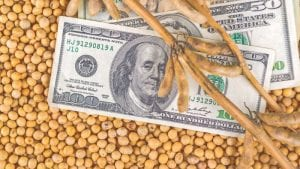 Soybean prices begin to rise in aftermath of COVID-19