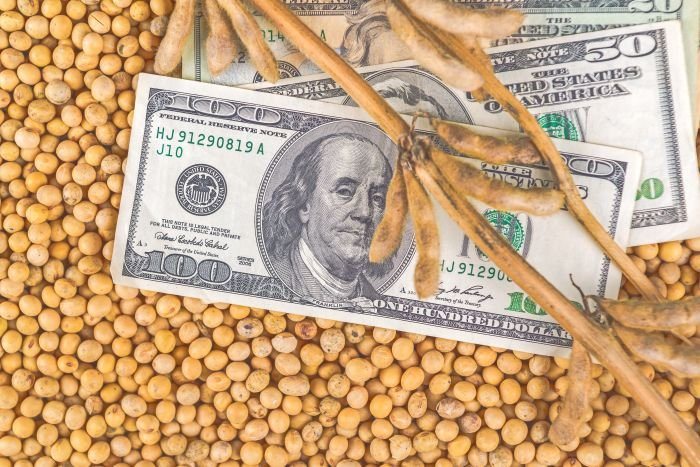 Corn, soybean prices remain low despite early blizzard