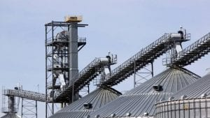 Columbia Grain cited after grain bin death
