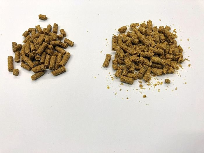 pellet-quality-in-broiler-feed.jpg